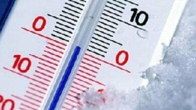 Ночь с 10 на 11 мая в Николаеве стала самой холодной за весь период наблюдений синоптиков   Корабелов.ИНФО