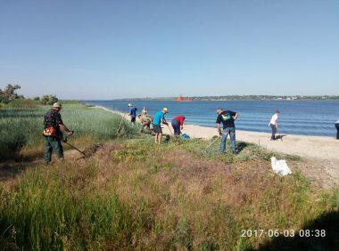 Активісти прибрали узбережжя в Широкій Балці і почали висаджувати там алею   Корабелов.ИНФО image 3