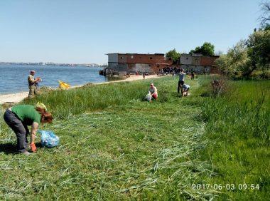 Активісти прибрали узбережжя в Широкій Балці і почали висаджувати там алею   Корабелов.ИНФО image 9