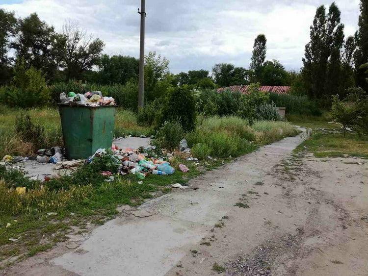 Photo of У родника в парке «Богоявленский» — снова «мусорный коллапс»