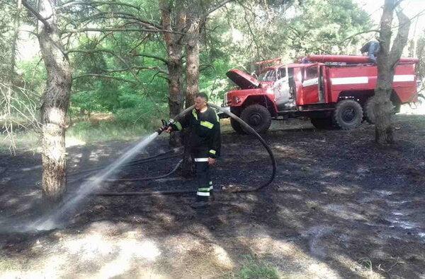 Причина займання - підпал. Рятувальники гасили вогонь площею понад 2 га у Балабанівському та Лиманівському лісах | Корабелов.ИНФО image 4