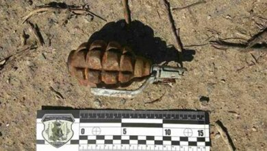 Боевую гранату нашли на пустыре в Николаеве | Корабелов.ИНФО image 1