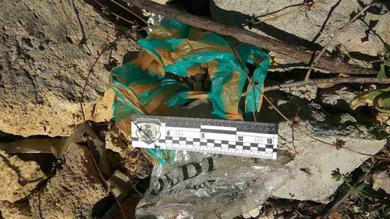 Боевую гранату нашли на пустыре в Николаеве   Корабелов.ИНФО image 3
