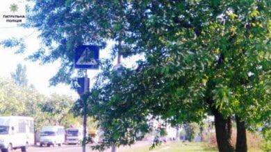 Дорожні знаки будуть видніші: у Корабельному районі обрізають гілки дерев над проїзною частиною вулиць | Корабелов.ИНФО