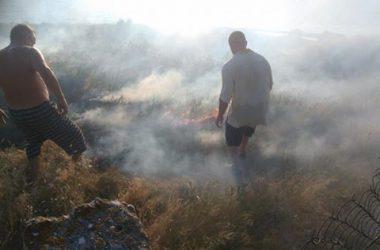 В Лупарево горела сухая трава, до приезда пожарных дачники самостоятельно пытались справиться с огнем | Корабелов.ИНФО image 1
