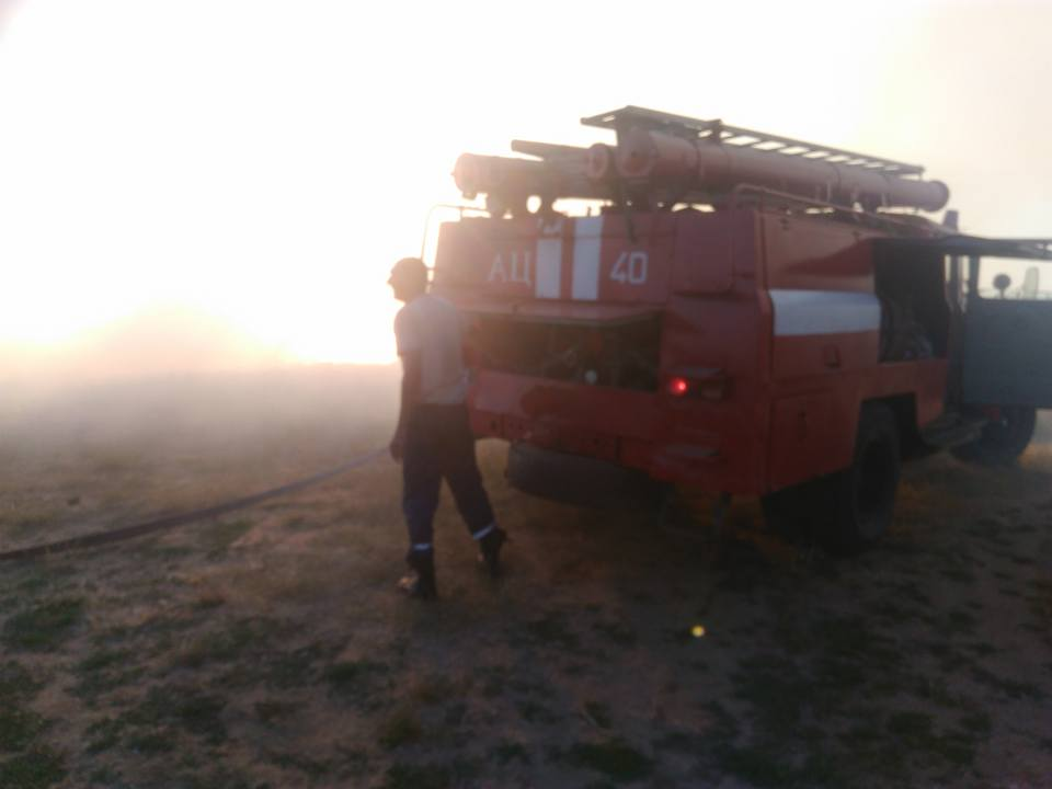 В Лупарево горела сухая трава, до приезда пожарных дачники самостоятельно пытались справиться с огнем | Корабелов.ИНФО image 2