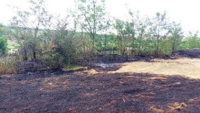 Photo of 13 випадків пожеж сухої трави сталося лише за добу на Миколаївщині. Горіло і в Корабельному районі міста