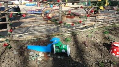 Photo of «Больных детей в сад мы не принимаем, но одна мама всех обвиняет, родители ее уже боятся», — заведующая д/с в Корабельном