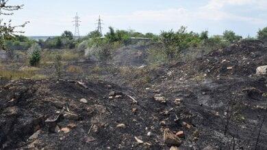 На відкритих територіях у Вітовському районі сталися масштабні пожежі | Корабелов.ИНФО