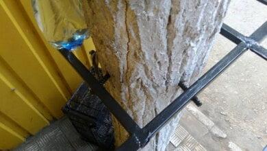 Photo of «От так «бізнесмени» використовують дерева», — возмущенный житель Корабельного района взывает к экологам