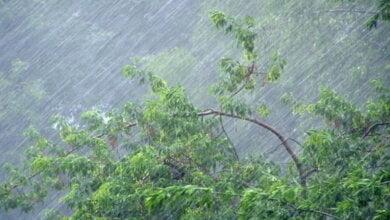 Photo of Штормовое предупреждение: жителей Николаевской области в ближайшие дни ожидают дождь и грозы