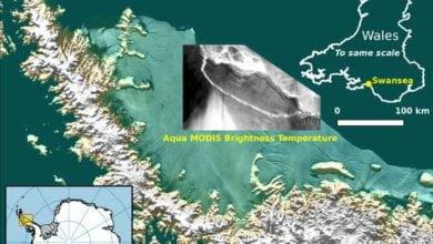 В Антарктиде от ледника откололся один из крупнейших в истории айсберг массой триллион тонн   Корабелов.ИНФО