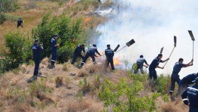 Знов масштабна пожежа у Вітовському районі: вогонь перекинувся з сухої трави на житловий сектор   Корабелов.ИНФО image 3