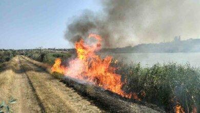 На вихідних у  Вітовському районі зафіксовано 7 випадків загорянь водночас | Корабелов.ИНФО