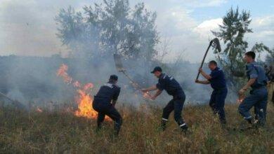 9 одиниць техніки, 54 чоловіка особового складу та місцеві мешканці гасили пожежу поблизу Галицинівських дач | Корабелов.ИНФО image 6