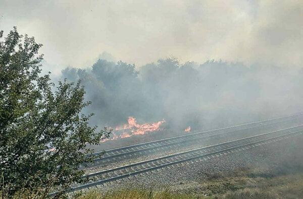 В Витовском районе пылают масштабные пожары на открытой территории - горят трава и деревья   Корабелов.ИНФО