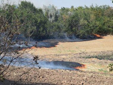 Кількість пожеж б'є усі рекорди. За минулу добу лише у Вітовському районі їх сталося 10, у Миколаєві - 5 | Корабелов.ИНФО image 3
