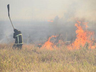 Кількість пожеж б'є усі рекорди. За минулу добу лише у Вітовському районі їх сталося 10, у Миколаєві - 5 | Корабелов.ИНФО image 2
