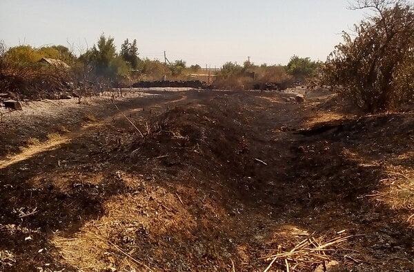 Кількість пожеж б'є усі рекорди. За минулу добу лише у Вітовському районі їх сталося 10, у Миколаєві - 5 | Корабелов.ИНФО image 1