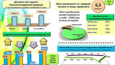 Николаевская область по объемам сельхозпроизводства оказалась на четвертом месте в Украине   Корабелов.ИНФО