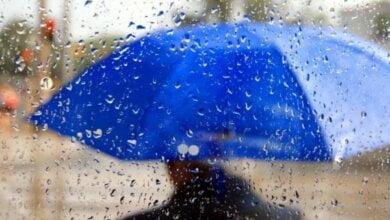 В выходные 22 - 23 сентября ожидаются дожди, усиление ветра и грозы | Корабелов.ИНФО image 1