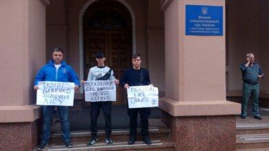 Высший спецсуд Украины вернул в суд первой инстанции дело леса «Маяк» в Корабельном районе | Корабелов.ИНФО