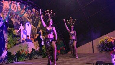 Ночь в Николаевском зоопарке порадовала ожившим волшебством (ВИДЕО)   Корабелов.ИНФО