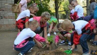 Преодолели препятствия, разгадали загадки и посадили деревья: малыши Корабельного района участвовали в экологической акции | Корабелов.ИНФО image 8