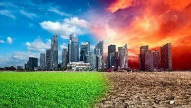 """Изменение климата """"подвинуло"""" Украину на 400 километров на юг   Корабелов.ИНФО"""