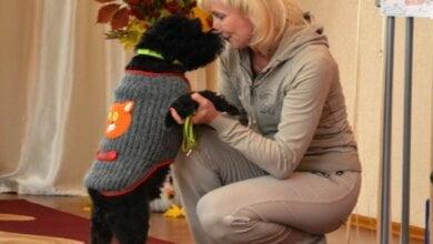 Любить и защищаться от бездомных собак учили малышей в Корабельном районе | Корабелов.ИНФО image 8