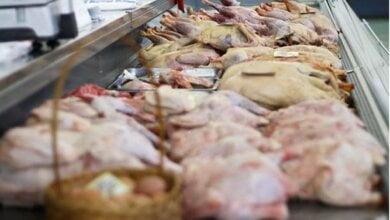 Украина увеличила экспорт мяса в полтора раза   Корабелов.ИНФО