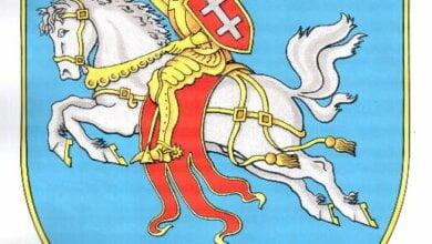 Всадник в рыцарских латах на коне и с мечом: у Витовского района - новый герб | Корабелов.ИНФО image 1