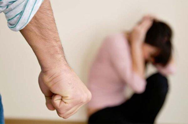 """120 випадків насилля в сім'ях """"відпрацьовано"""" до 1 грудня адміністрацією Корабельного району   Корабелов.ИНФО"""