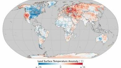 Украина попала в зону аномально теплой зимы на карте NASA   Корабелов.ИНФО