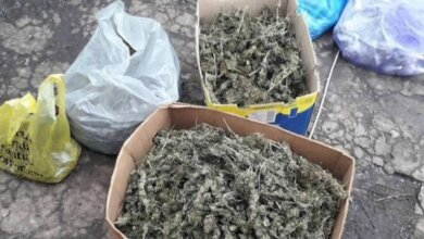 Близько 25 кілограмів фасованої наркотичної речовини вилучили поліцейські у мешканця Вітовського району (ВІДЕО)   Корабелов.ИНФО image 7