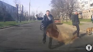 Photo of «Обезбашенные пешеходы»: николаевец снял ролик о гражданах, не соблюдающих ПДД (видео)