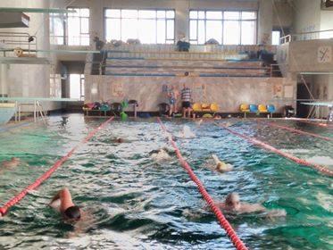Один день з життя спортсменів-плавців старшого тренера Ільїна або Репортаж з гостини у не звичайних людей
