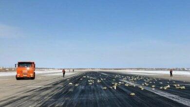 Из российского самолета при взлете выпало почти 10 тонн золота. Поиски продолжаются | Корабелов.ИНФО