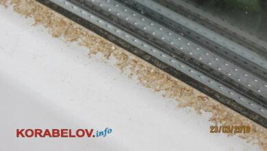 Photo of «Рыжий» снег в Николаеве окрашен песком из Сахары, – гидрометцентр (видео)
