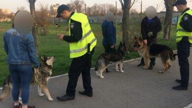В Николаеве за выгул собак без намордников патрульные начали составлять протоколы | Корабелов.ИНФО