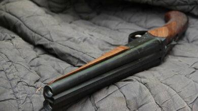 В Корабельном районе мужчина нашел на свалке два обреза ружья и почти 300 патронов | Корабелов.ИНФО