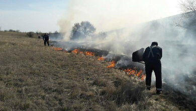 Поджоги камыша и травы тушили в Корабельном и Витовском районах | Корабелов.ИНФО
