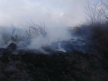 Ймовірно, навмисний підпал: площа пожежі в у Балабанівському лісі склала 1100 кв.м.