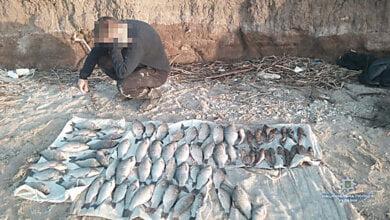 Photo of В Витовском районе полицейские поймали браконьеров с уловом в 240 карасей