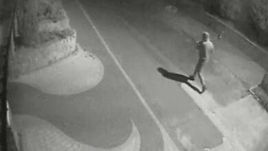 В Николаеве догхантер отравил двух собак, подбросив яд во двор частного дома | Корабелов.ИНФО