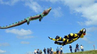 Не змеями едиными: на этих выходных под Николаевом состоится грандиозный кайт-фестиваль | Корабелов.ИНФО image 1