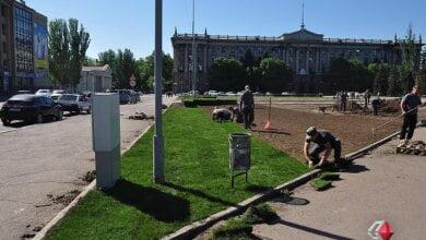 В мэрии Николаева прокомментировали стоимость газона, который укладывают на Соборной площади | Корабелов.ИНФО