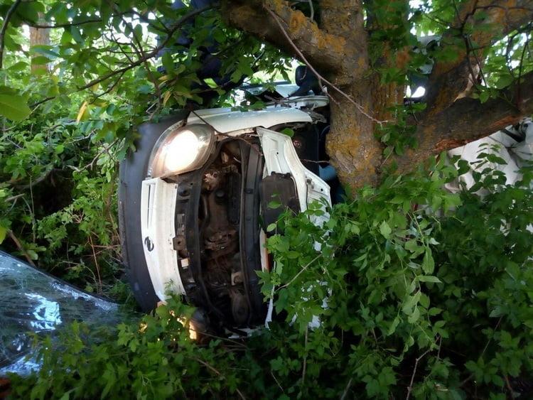 Жахливе ДТП на Миколаївщині: 5 загиблих, ще 3 постраждалих