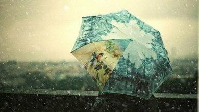 Похолодает: на завтра в Николаеве синоптики обещают дожди и до +22º | Корабелов.ИНФО
