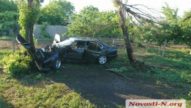 В Витовском районе BMW слетел с трассы и врезался в дерево: пострадали два человека | Корабелов.ИНФО image 2